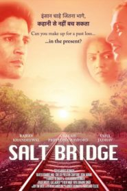 Salt Bridge