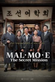 Malmoe: The Secret Mission