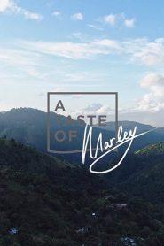 La Jamaïque au goût de Marley