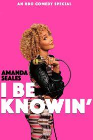 Amanda Seales: I Be Knowin'